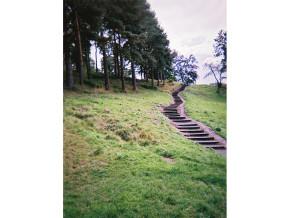 Steps_NoelMcK_template